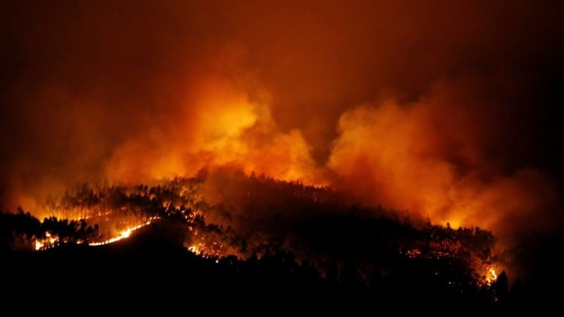 At Least 39 Die in Portuguese Forest Fire
