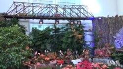 美国国家植物园展出31个老火车站模型
