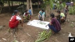 In this May 2020 photo provided by the Southern Youth Development Organization, local community members collect data and document herbal medicinal plants and vegetables in the Lenya area of the Tanintharyi region in southern Myanmar.