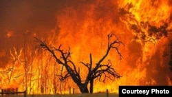 About 1,379 740 hectares have already been lost this year due to veld fires. (Photo/Road Safety website)