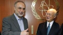 دیدار آمانو و صالحی در وین - ۲۰۱۱