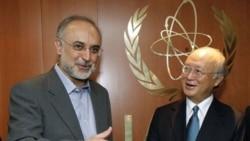 یوکیو آمانو رییس آژانس بین المللی انرژی آتمی و علی اکبر صالحی در وین، اتریش. ۱۲ ژوئیه ۲۰۱۱