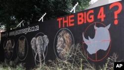 南非的拯救濒危物种宣传画上有犀牛