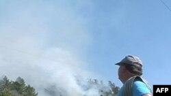 Shqipëri, masa për parandalimin e zjarreve në zonat pyjore të veriut