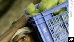 په هند کې د بیو د لوړیدو له امله اعتصابونه پیل شوي