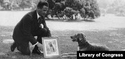 Обладая статусом Первой собаки, Лэдди-Бой был удостоен права на официальный портрет