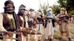 گزارش سياسی: تلاش برای پاک کردن جنوب افغانستان از وجود طالبان ادامه دارد