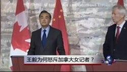 热点快评:王毅为何怒斥加拿大女记者?