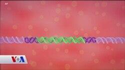 Kanser Tedavisinde Gen Terapisi Kemoterapinin Yerini Alabilecek mi?