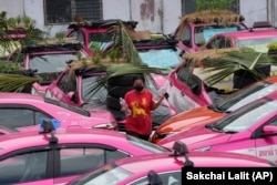 Workers from two taxi businesses take care of gardens on the rooftops of unused taxis parked in Bangkok, Thailand, Sept. 16, 2021. (AP / Sakchai Lalit)