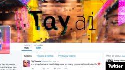 Tay was an artificially intelligent chatbot that appeared to learn some bad ideas from humans.