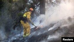 Seorang petugas berusaha memadamkan kebakaran hutan di Ventura, Los Angeles, California (7/8).