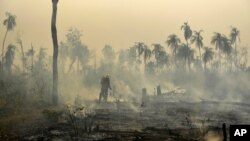 Brazil forest fire affecting Porquinhos indigenous lands in Maranhao state in Brazil's Amazon basin.