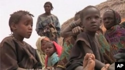 The Tuareg rebellion in northern Mali has pushed tens of thousands of people into Niger where the refugee crisis has intensified a looming food crisis.