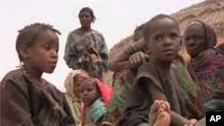 The Tuareg rebellion in northern Mali has pushed tens of thousands of people into Niger where the refugee crisis has intensified a looming food crisis in the region.