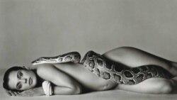 فروش عکس رکورد شکن ریچارد آویدان در حراجی کریستی پاریس