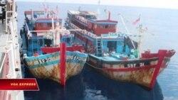 Malaysia bắt giữ 38 thuyền viên VN nghi dùng giấy phép giả và đưa hối lộ