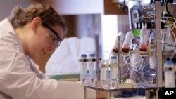 Xét nghiệm mẫu máu trong phòng thí nghiệm