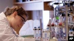 Seorang peneliti bekerja di laboratorium untuk memeriksa tes darah. (Foto: Ilustrasi)