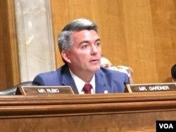 听证会主席科里·加德纳参议员 (美国之音张佩芝拍摄)