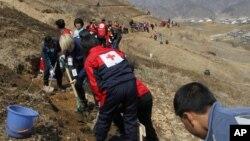 지난 2013년 4월 북한 평양 북부 구장군 룡철로동자구에서 적십자 직원과 학생들이 나무를 심고 있다. (자료사진)