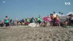 加州传统的狗冲浪比赛恢复举行