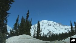 Mount Rainier is seen from the road to Paradise Visitor Center at Mount Rainier National Park on Sunday, June 1, 2014.