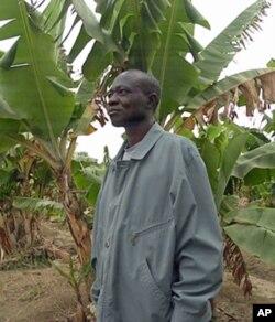 Pedro Jacinto da Costa, engenheiro agrónomo responsável pela exploração agrícola em São Nicolau