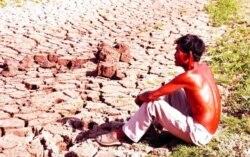 Biến đổi khí hậu gây ra những hiện tượng lạ thường ở Đồng Bằng Sông Cửu Long (ảnh năm 2016). [nguồn: VN Express 3/11/2016]