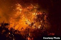 Besarnya api kebakaran terlihat saat malam hari. (Foto courtesy: SOB)