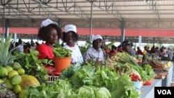 União Europeia investe 75 milhões de dólares na agricultura angolana - 1:26