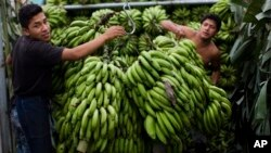 Workers unload bananas from a truck in La Terminal market, Guatemala City. (file)
