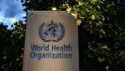 Trụ sở Tổ chức Y tế Thế giới (WHO) tại Geneva, Thụy Sĩ.