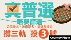 真普選聯盟宣傳全民投票(真普選聯盟網站圖片)