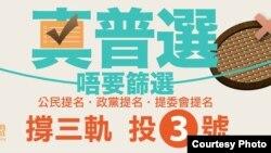 真普选联盟宣传全民投票(真普选联盟网站图片)