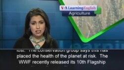 Environmental Group Warns Earth's Health at Risk