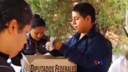 墨西哥執政黨贏得議會中期選舉