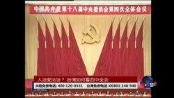 海峡论谈:人治变法治? 台湾如何看四中全会