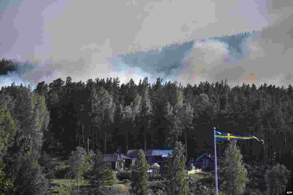 تصویری از آتش سوزی های جنگلی در سوئد