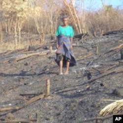 Slash and burn farming in Timor, Indonesia (ANTARA).