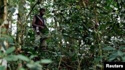 Seorang pemberontak FDLR bersembunyi di sebuah hutan di Kongo timur (foto: dok).