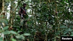 Un milicien FDLR dans l'est de la RDC. (Photo Reuters)