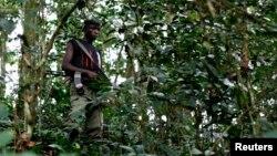 Un combattant du groupe rebelle FDLR aperçu dans une brousse de l'est du Congo. (Archives)