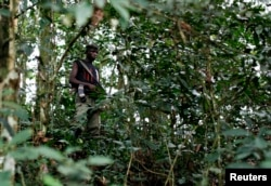 FILE - A fighter from the FDLR rebel group stands guard deep in the bush of eastern Congo.