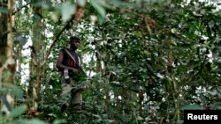 FILE - A fighter from the FDLR rebel group stands guard deep in the bush of eastern Congo, Feb. 6, 2009.