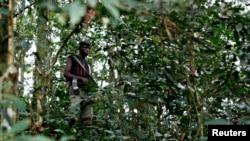 Un combattant FDLR dans l'est de la RDC