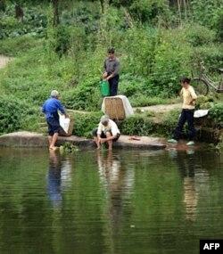 在池边洗菜的农民
