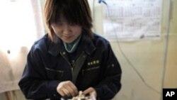 후쿠시마 부근농장에서 버섯을 손질하는 일본 여성