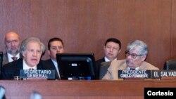 El Consejo Permanente de la OEA se reunió el viernes 11 de enero de 2019 en Washington para considerar la aplicación de la Carta Democrática al gobierno de Nicaragua que lidera el presidente Daniel Ortega.