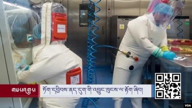 Bên trong phòng thí nghiệm P4 của Viện Virus học Vũ Hán.